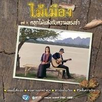 ฟังเพลง ดอกไม้แห้งกับความทรงจำ - ไม้เมือง (ฟังเพลงดอกไม้แห้งกับความทรงจำ) | เพลงไทย