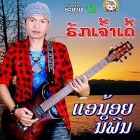 ฟังเพลง หนุ่มโส้งขาดเข่า - แอน้อย นิพน (ฟังเพลงหนุ่มโส้งขาดเข่า) | เพลงไทย